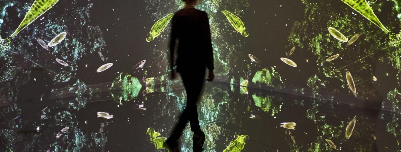 Eine menschliche Silhouette wandelt durch einen verspiegelten Raum, der wie eine Galaxie aussieht. Grüne und bläuliche Mikroben sind dargestellt in der Dunkelheit, die verdoppelt sich vierfach durch die Spiegel.