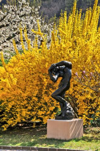 Die Aufnahme zeigt eine stehende Bronzeskulptur auf einem Sockel, die vor einem blühenden, gelben Busch steht. Die dargestellte Person führt die Arme vor sich zusammen und ist manieristisch gedreht.